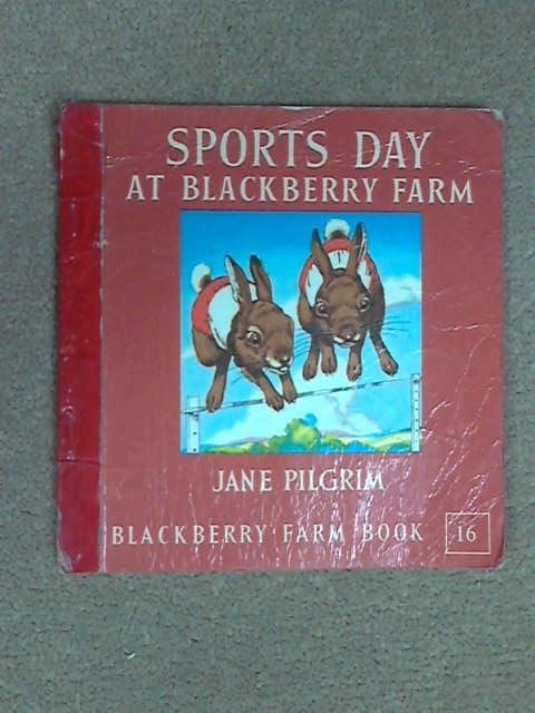 Sports Day at Blackberry Farm, Jane Pilgrim