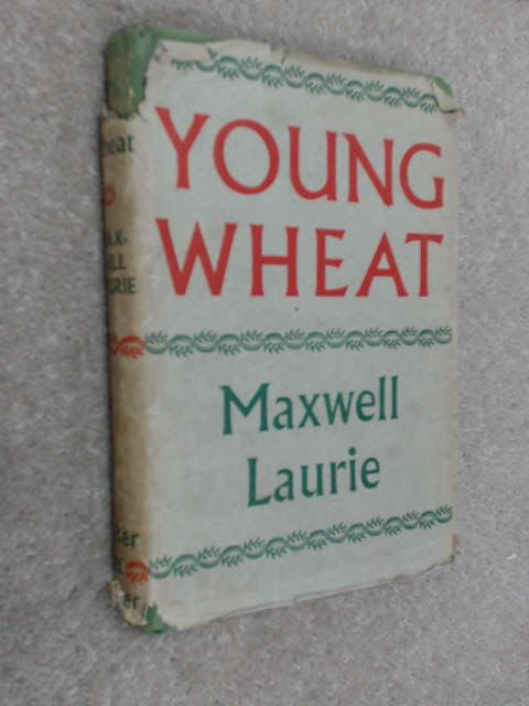 Young Wheat by Maxwell Laurie