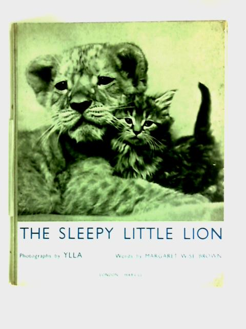The Sleepy Little Lion by Margaret Wise Brown