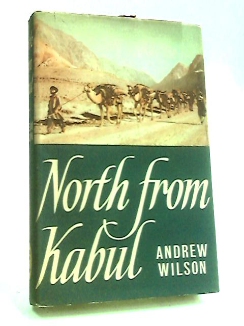 North from Kabul by Wilson, Andrew