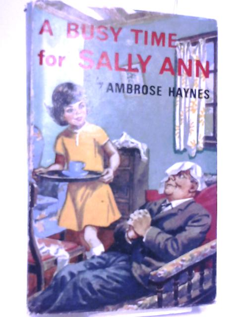 A Busy Time for Sally Ann by Ambrose Haynes