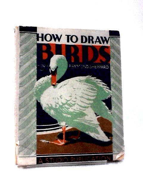 How to Draw Birds by Raymond Sheppard