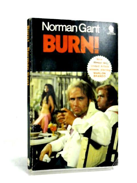 Burn! by Gant, Norman