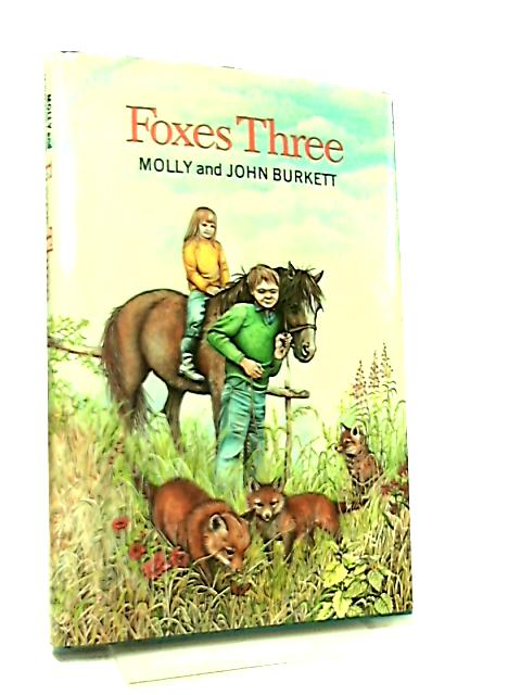 Foxes Three by Molly and John Burkett