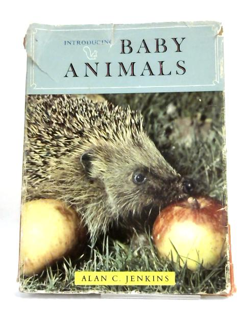 Introducing Baby Animals by Alan C Jenkins,