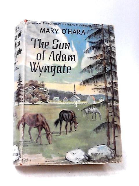 The Son of Adam Wyngate by O'Hara, Mary