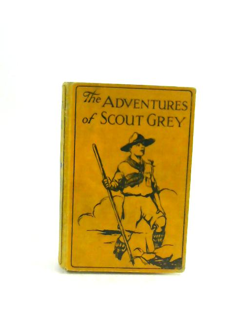 The Adventures of Scout Grey by R L Bellamy