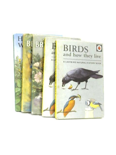 Set of 5 Ladybird Books about Birds Vintage Hardbacks by Various