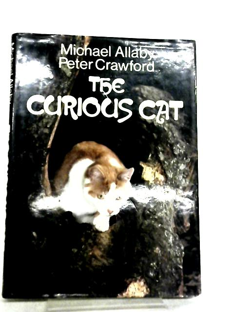 Curious Cat by Michael Allaby