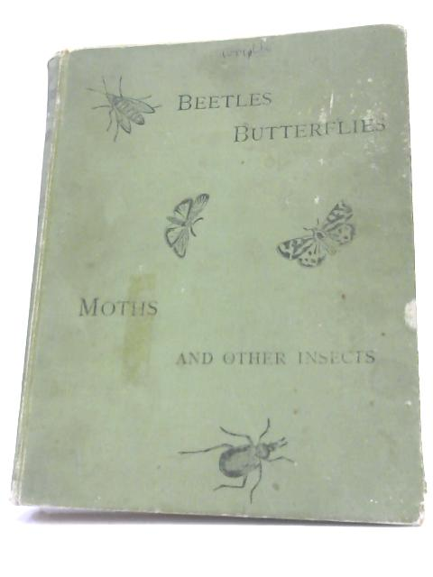 Beetles, Butterflies, Moths, And Other Insects by Kappel