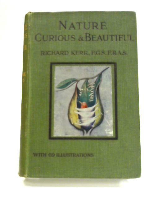 Nature - Curious and Beautiful by Richard Kerr