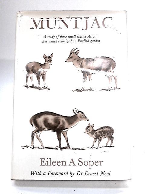 Muntjac by Soper,Eileen