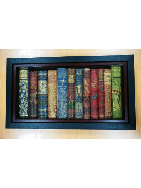 Framed Vintage Book Spines by Various