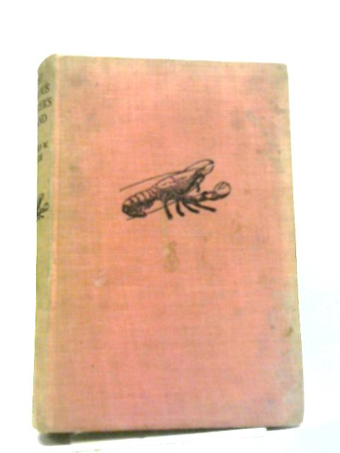 The Curious Lobster's Island by Richard Warren Hatch