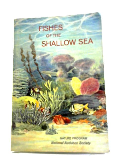 Fishes Of The Shallow Sea by Russ Kinne