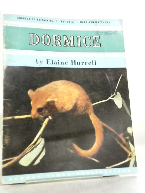 Dormice, Animals Of Britain No 10 by Elaine Hurrell