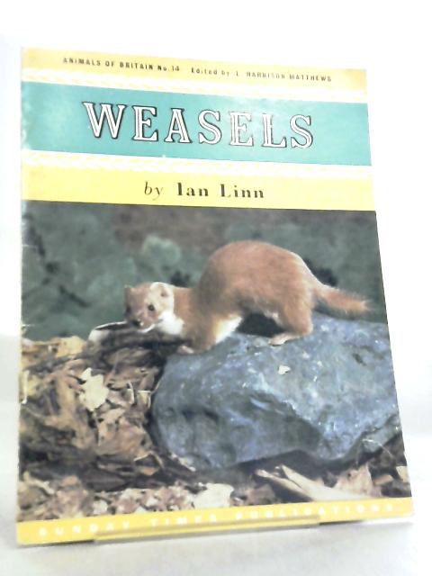 Weasels, Animals of Britain No 14 by Ian Linn