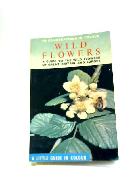 Wild flowers by Jean Raray