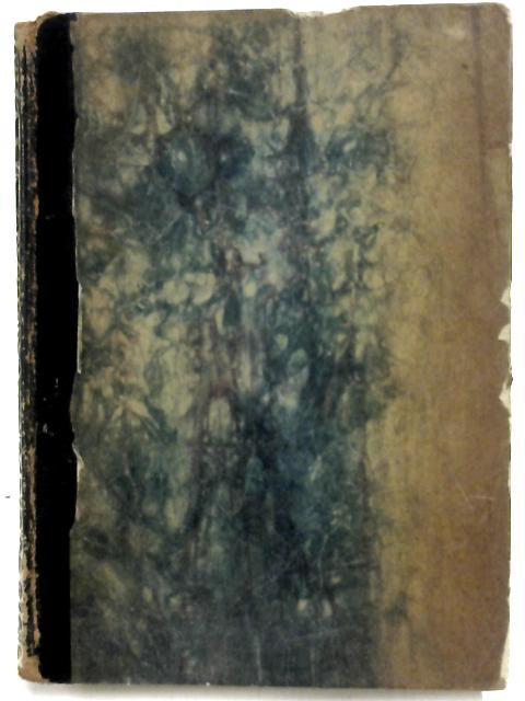 Das Zeitalter Dantes by Federn, Karl
