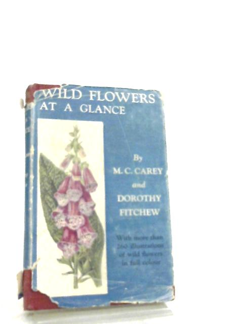 Wild Flowers At A Glance by M. C. Carey & Dorothy Fitchew