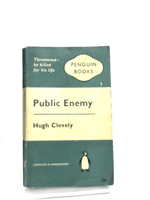 Public Enemy by Hugh Clevely