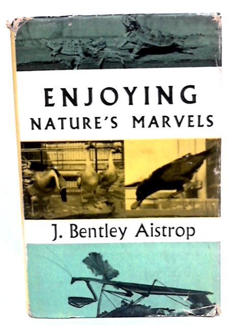 Enjoying nature's marvels By Aistrop, Jack Bentley