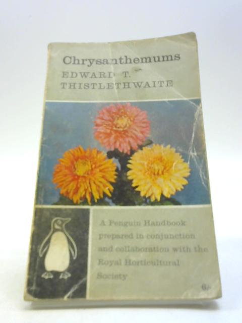 Chrysanthemums by Thistlewaite, Edward T