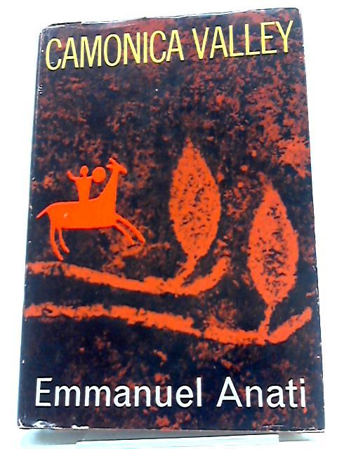 Camonica Valley by Emmanuel Anati