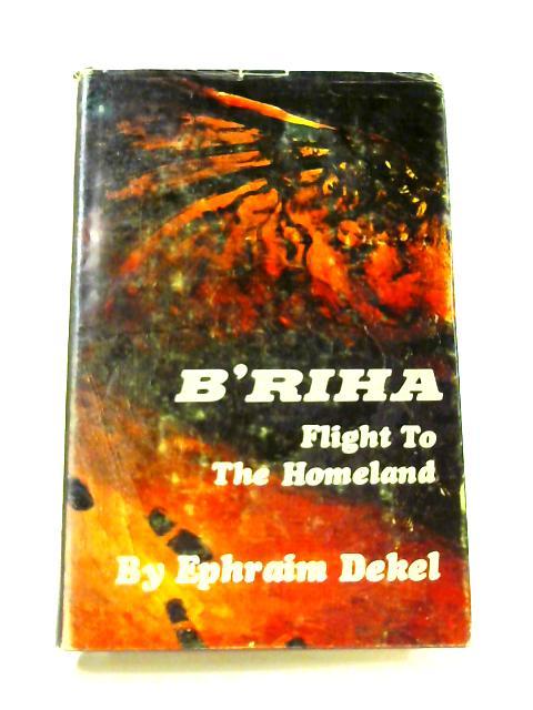 B'riha: Flight to the Homeland by E. Dekel