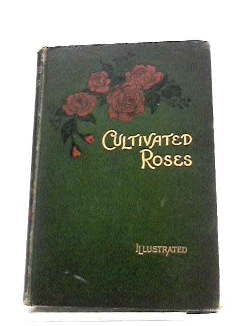 Cultivated Roses by T. W Sanders