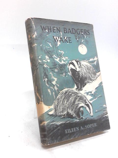 When Badgers Wake by Eileen A Soper