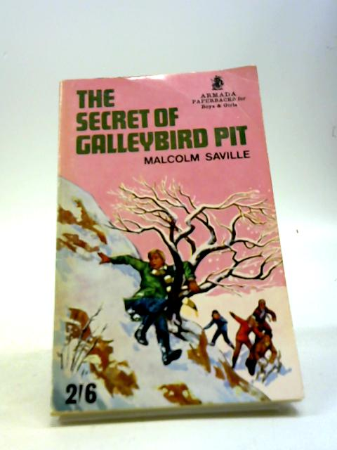 The Secret of Galleybird Pit by Saville, Malcolm
