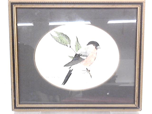 Bullfinch Print by John Morland, Coloured by Hand By Anon