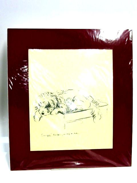 """Print of a Dog: '""""Scruffy"""" Keeping and Eye on Me' By Unknown"""