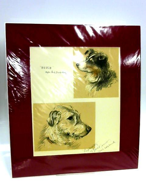 Print of Two Dogs: 'Hyde Park Sheepdog' and 'Irish Wolfhound' by Unknown
