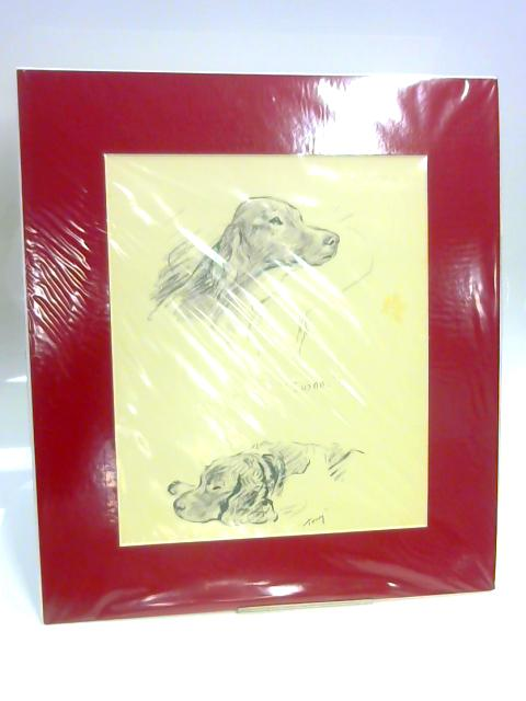 "Print of Two Dogs: ""Susan"" and ""Tony"" by Unknown"