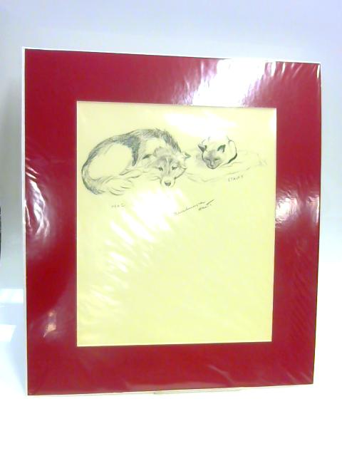 "Print of Dog and Cat: ""Mac"" and ""Stalky"" by Unknown"