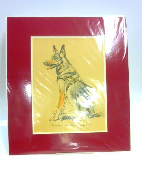 """Print of a Dog: """"Sheila"""" By Lucy Dawson"""