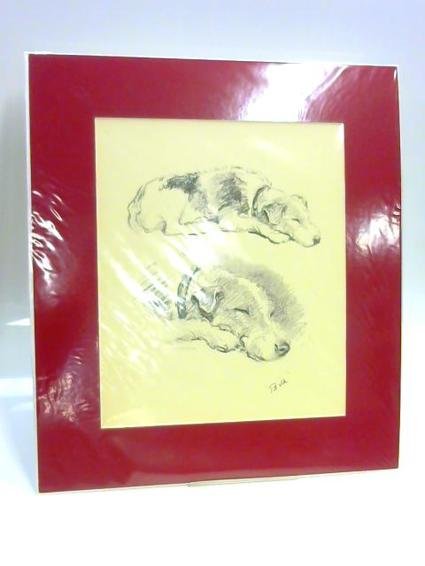 "Print of a Dog: ""Bill"" by Lucy Dawson"