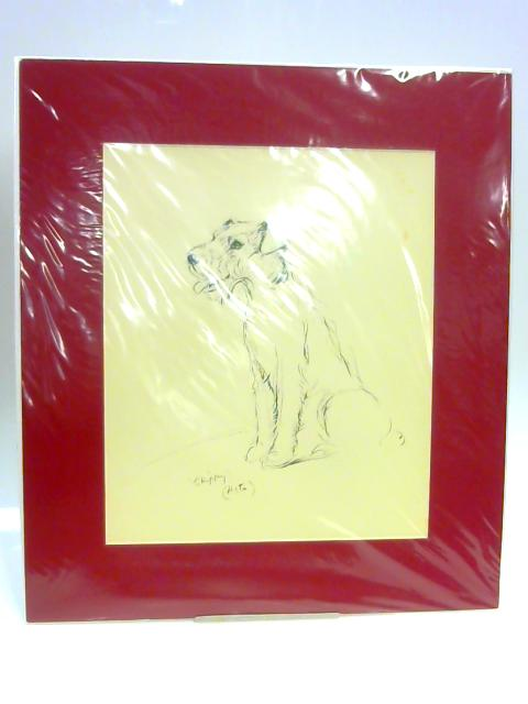 "Print of a Dog: ""Skippy"" by Lucy Dawson"