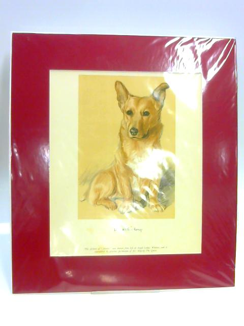 "Print of a Dog: ""Dookie"" by Lucy Dawson"