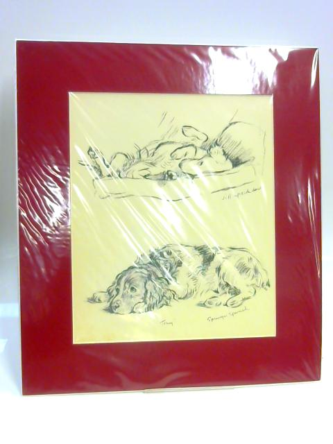 "Print of Dogs: ""Tony"" and 'Jill Upside Down' by Lucy Dawson"