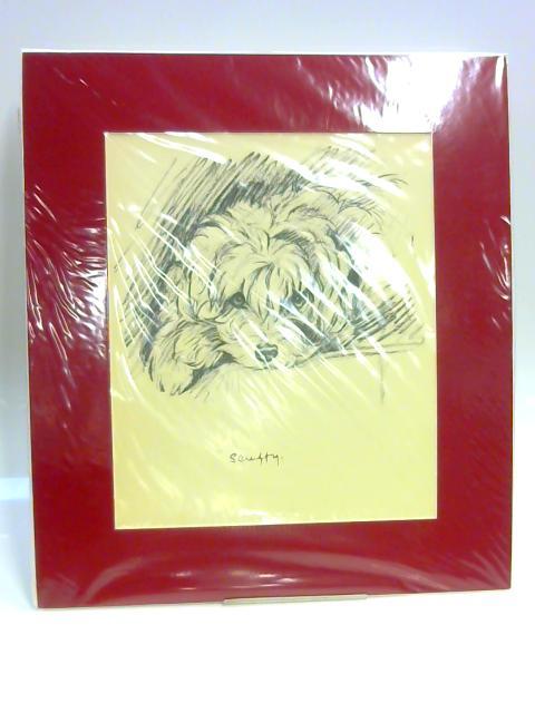 """Print of a Dog: """"Scruffy"""" by Lucy Dawson"""