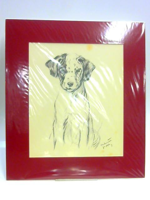 Print of a Dog: 'Dalmatian Puppy' by Lucy Dawson