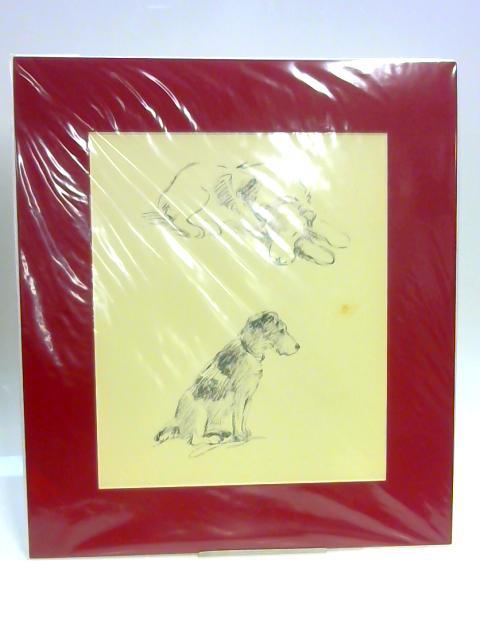 Print of a Dog by Lucy Dawson