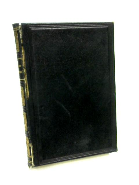 Pocket Paragraph Bible: The New Testament by Unknown