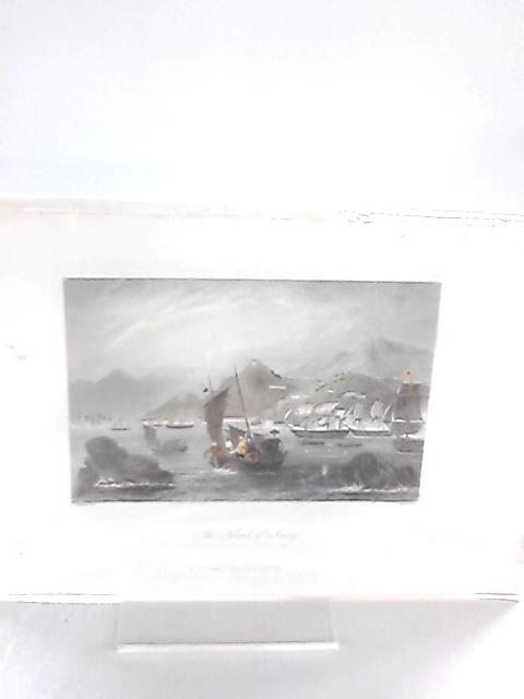 Vintage Engraving depicting The Island of Amoy, by C. Graham & W. French By Anon