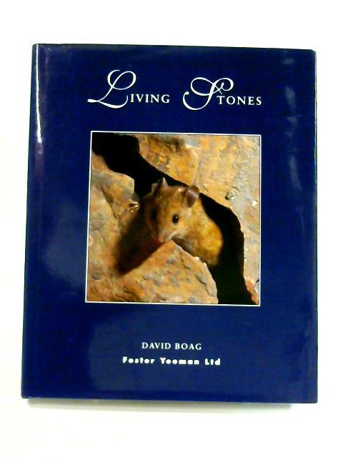 Living Stones By David Boad