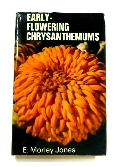 Early Flowering Chrysanthemums by Edwin Morley Jones