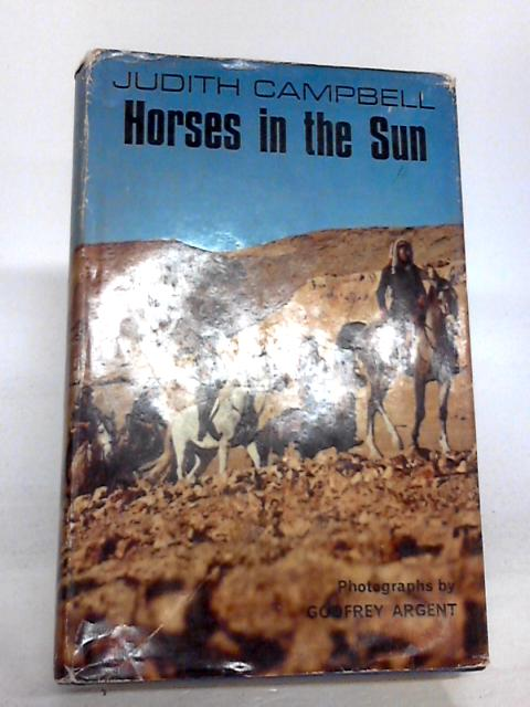 Horses in the sun by Campbell, Judith
